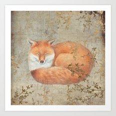 Red fox among thorns Art Print