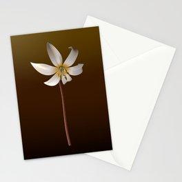 Larisa Stationery Cards