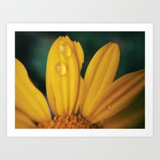 Yellow Water Art Print