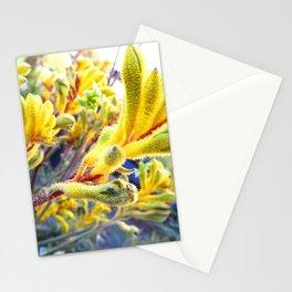 Kangaroo Paw Stationery Cards