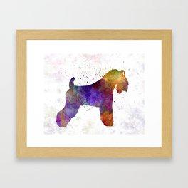 Kerry Blue Terrier 01 in watercolor Framed Art Print