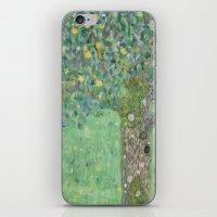 gustav klimt iPhone & iPod Skins featuring Gustav Klimt - Rosebushes under the Trees by TilenHrovatic