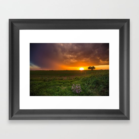 Autumn Sunset - Flowers and Tree on Oklahoma Plains by seanramsey