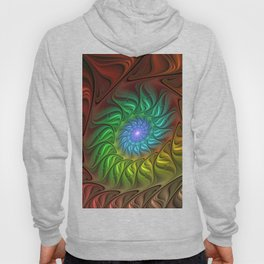 Colorful Spiral Fractal Hoody