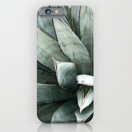 Botanical Succulents // Dusty Blue Green Desert Cactus High Quality Photograph iPhone Case