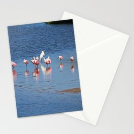 The Spoonbill Legend Lingers III Stationery Cards