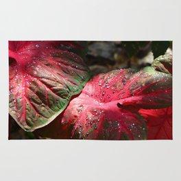Tropical Rain - Botanical Art by Sharon Cummings Rug