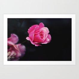 I hate roses Art Print