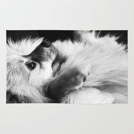Just Love Pomeranians Rug