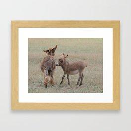 Little Donkey Framed Art Print