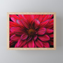 Red Flower Glow Framed Mini Art Print