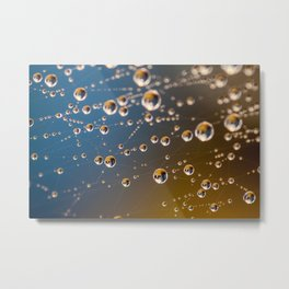 Dew on a Spider's Web 01 Metal Print