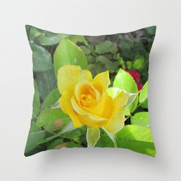 Rosa Amarilla Throw Pillow