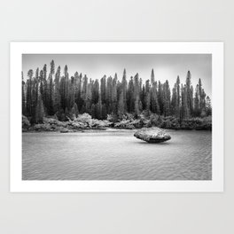 Beautiful pine forest view at Natural Pool in black and white. Art Print