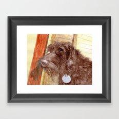 Chocolate Labradoodle Jackson Framed Art Print