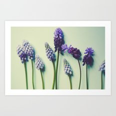 Pretty Blue Flowers Art Print