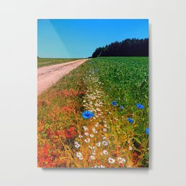 Summer flowers along the trail Metal Print