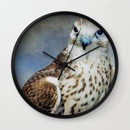 Saker Falcon Wall Clock