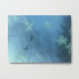 Frost on My Windshield Metal Print