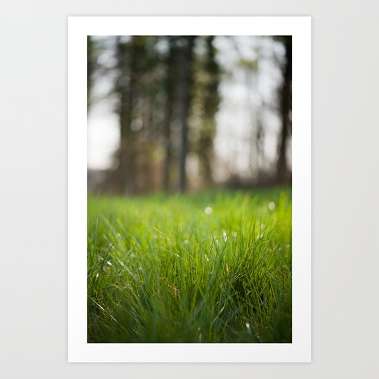 Spring Awakens Art Print