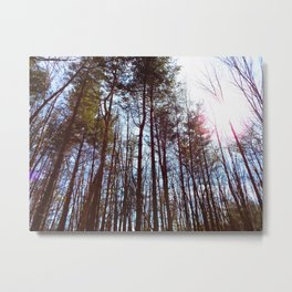 Forest of Fantasy Metal Print
