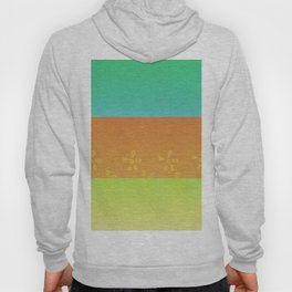 Shades of color Hoody