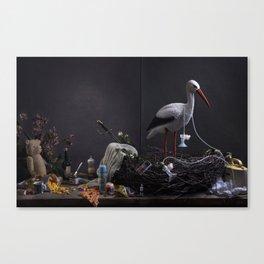 Barsel cover Canvas Print