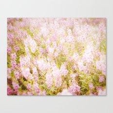 Summer Pink Canvas Print
