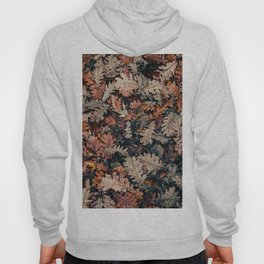Autumn Leafs Pattern (Color) Hoody