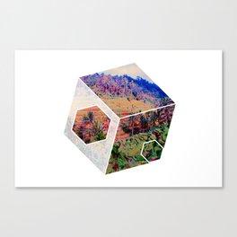 Balinese Geometry Canvas Print