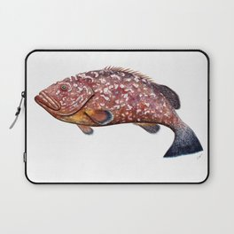 Dusky grouper or merou Laptop Sleeve