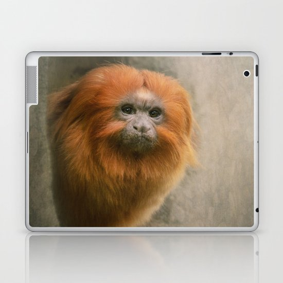 Little Golden Headed Lion Tamarin Laptop & iPad Skin