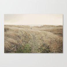 Ocean Trail Canvas Print