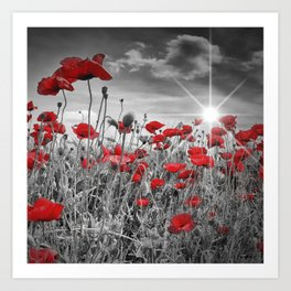 Idyllic Field of Poppies with Sun Art Print