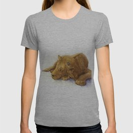 Lion and Mouse: Aesop's Fable T-shirt