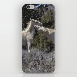 Wild Horses with Playful Spirits No 7 iPhone Skin