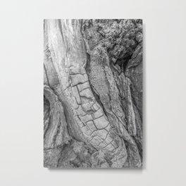 Tree Spine 01C Metal Print