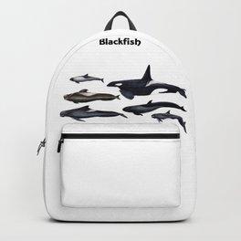 Blackfish Backpack