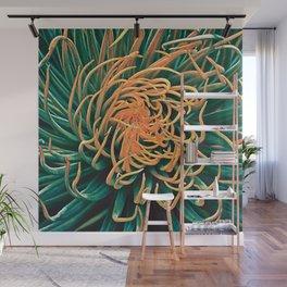 Green & orange succulent Wall Mural