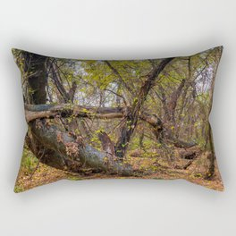 Budapest and the Danube Rectangular Pillow