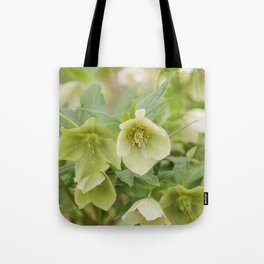 Lovely Lime Tote Bag