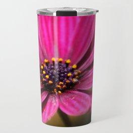 pink cape daisy Travel Mug