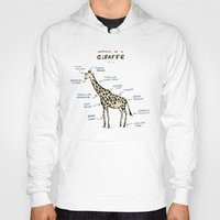 Hoodies featuring Anatomy of a Giraffe by Sophie Corrigan