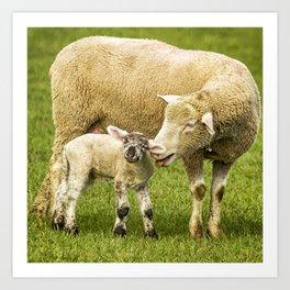 Mama Had a Little Lamb Art Print