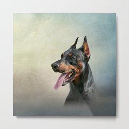 Drawing Doberman dog 2 Metal Print