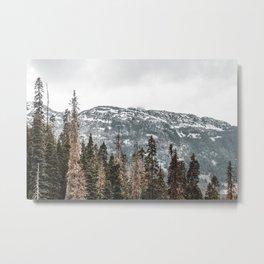 Sawtooth Canopy Metal Print