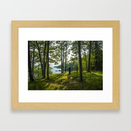 The spot Framed Art Print