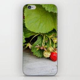 Wild Strawberry Photography Print iPhone Skin