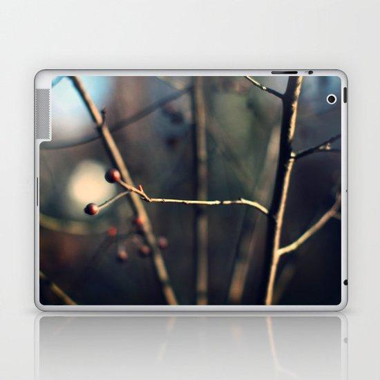 Winter Waits Laptop & iPad Skin