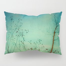 Between Autumn and Winter Pillow Sham